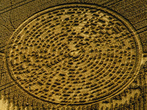 1000+ images about Crop Circles on Pinterest | Crop ... |Chilbolton Crop Circle Explanation