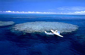 Pacific Gyre Underwater Plastic Garbage Patch Green Photo